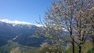 Photo of Südtirol – Alto Adige